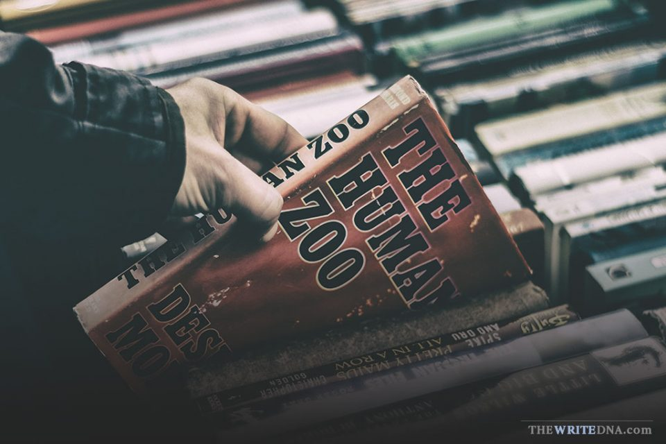 UNEXPECTED COMPETITION FOR AUTHORS: 3 Book Industry Trends (Diversity in Publishing)